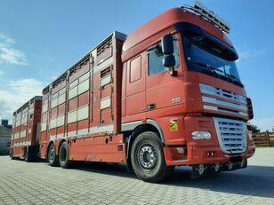 DAF XF 105.510 6x4 Élőállat-szállító állatszállító teherautó + állatszállító pótkocsi