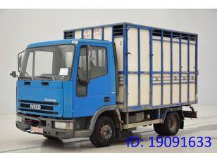 IVECO 65E14 állatszállító teherautó
