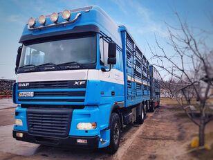 PEZZAIOLI állatszállító teherautó + állatszállító pótkocsi