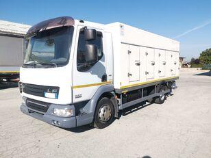 DAF 45.220 SURGELATI ATP 10/2024 - 120QLI hűtős teherautó